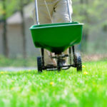 Lawn-Care-local-records-office-how-to-diy-basic-care