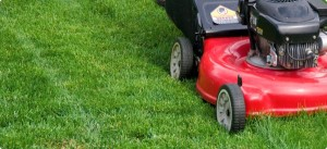 lawn-mower-local-records-office-how-to-diy