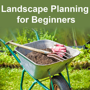 Landscape Planning for Beginners-local-records-office