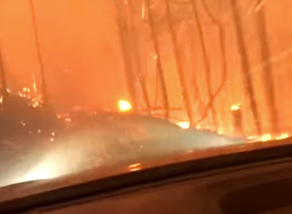 Boston family attempt to escape vicious forest fire (VIDEO)